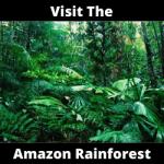 Visit The Amazon Rainforest