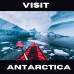 Visit Antarctica For Your Next Holiday